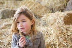 逗人喜爱的女孩单独坐干草堆 免版税库存照片