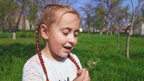 逗人喜爱的女孩吹的蒲公英花户外 愉快的孩子获得乐趣在春天公园 影视素材