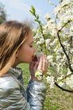 逗人喜爱的女孩在春日嗅到开花花户外 库存照片