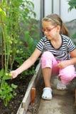 逗人喜爱的女孩在温室里 免版税库存图片