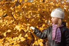 逗人喜爱的女孩在秋天公园 免版税库存照片