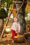 逗人喜爱的女孩在秋天公园 图库摄影