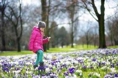 逗人喜爱的女孩采摘番红花在早期的春天的美丽的开花的番红花草甸开花 图库摄影