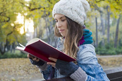 逗人喜爱的女孩阅读书在日落的公园 免版税库存照片