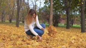 逗人喜爱的妇女在秋天公园收集在花束的下落的金黄叶子户外 股票视频