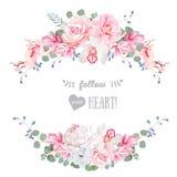 逗人喜爱的婚礼花卉传染媒介设计框架 罗斯,牡丹,兰花,银莲花属,桃红色花, eucaliptus离开 图库摄影