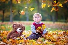 逗人喜爱的学龄前孩子,男孩,使用与叶子在公园, autu 免版税库存照片