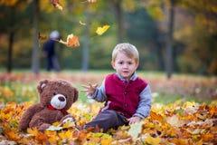 逗人喜爱的学龄前孩子,男孩,使用与叶子在公园, autu 免版税库存图片