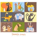 逗人喜爱的宠物、猫、狗和他们的行动,情感 库存例证