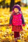 逗人喜爱的小女孩在秋天公园 库存图片