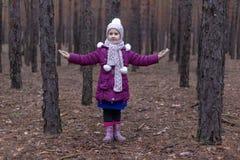 逗人喜爱的小女孩在秋天时间的杉木森林里 免版税库存图片