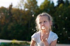 逗人喜爱的小女孩在草甸 免版税库存照片