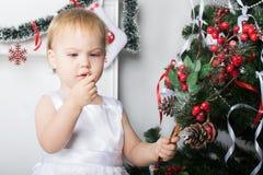 逗人喜爱的小女孩在Christm附近审查一个红色莓果花揪 免版税库存照片