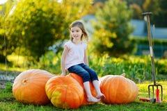 逗人喜爱的小女孩坐巨大的南瓜 免版税图库摄影