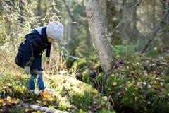 逗人喜爱的小女孩探索的秋天森林在春天小河之前 库存图片