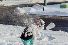 逗人喜爱的小女孩是去的冰鞋户外 库存图片