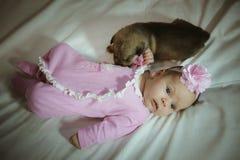 逗人喜爱的小女孩的图象桃红色衣服和小狗的 免版税库存图片
