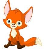 逗人喜爱的小狐狸 免版税图库摄影