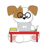 逗人喜爱的小狗和膝上型计算机 图库摄影