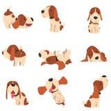 逗人喜爱的小猎犬狗在各种各样的姿势集合,在白色背景的滑稽的动物卡通人物传染媒介例证 皇族释放例证