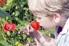 逗人喜爱的小男孩嗅到一朵狂放的pooy花 图库摄影