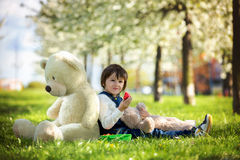 逗人喜爱的小男孩,吃草莓在晴朗的春天的公园 库存图片