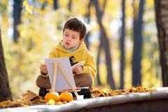 逗人喜爱的小男孩绘画在金黄秋天公园 库存照片