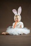 逗人喜爱的小的兔宝宝用红萝卜 免版税库存照片