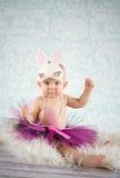 逗人喜爱的小的兔宝宝 图库摄影
