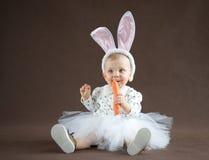 逗人喜爱的小的兔宝宝 免版税图库摄影