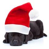 逗人喜爱的小的圣诞老人 库存照片