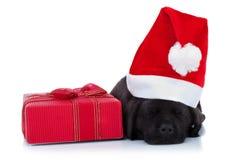 逗人喜爱的小的圣诞老人 免版税库存图片