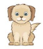 逗人喜爱的小的小狗 库存照片