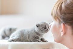 逗人喜爱的小的猫和妇女摩擦鼻子 库存照片