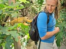 逗人喜爱的小的猴子检查旅游背包徒步旅行者 免版税图库摄影