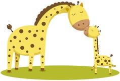 逗人喜爱的小长颈鹿和母亲 库存照片