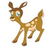逗人喜爱的小鹿一点 免版税库存照片