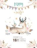 逗人喜爱的小鹿托儿所动物隔绝了孩子的例证 漂泊水彩boho森林鹿家庭图画 库存照片