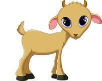 逗人喜爱的山羊动画片 库存照片