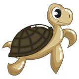 逗人喜爱的布朗乌龟 免版税图库摄影