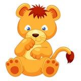 逗人喜爱的幼狮   库存照片