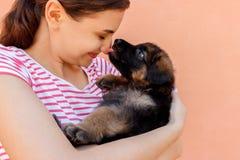 逗人喜爱的德国牧羊犬小狗亲吻的妇女` s鼻子 免版税库存图片