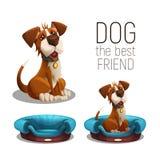 逗人喜爱的愉快的狗坐在白色背景隔绝的狗床 向量例证