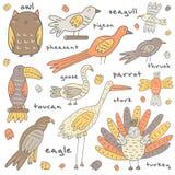 逗人喜爱的手拉的乱画鸟收藏 库存例证