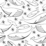 逗人喜爱的手拉的鲸鱼 单色传染媒介无缝的样式 皇族释放例证
