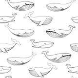 逗人喜爱的手拉的鲸鱼 单色传染媒介无缝的样式 库存例证