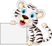 逗人喜爱的摆在与空白的标志的婴孩白色老虎 免版税库存照片