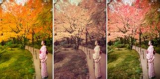 逗人喜爱的日本女孩在秋天原野土地镇静地站立 库存照片