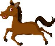 逗人喜爱的棕色马动画片赛跑 库存图片