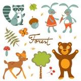 逗人喜爱的森林动物五颜六色的收藏 免版税库存照片